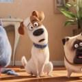 Pets 2 – Vita da animali: trama, trailer e recensione