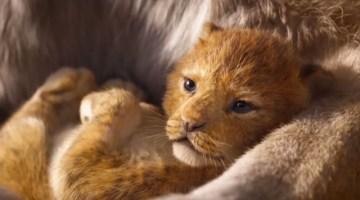 Il Re Leone: recensione, trama e trailer del live action del classico Disney