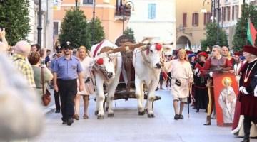 Pergola: dalla Notte Verde alla Serata Medievale, arrivano gli eventi clou dell'estate