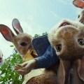 Peter Rabbit: il grande classico di Beatrix Potter in versione live action