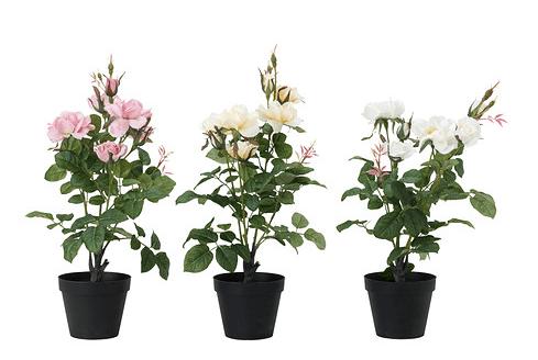 Piante Ufficio Ikea : Piante finte ikea: verdi o con fioriture?