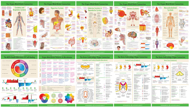 Master Class Webinar Lifestyle Prescriptions Health