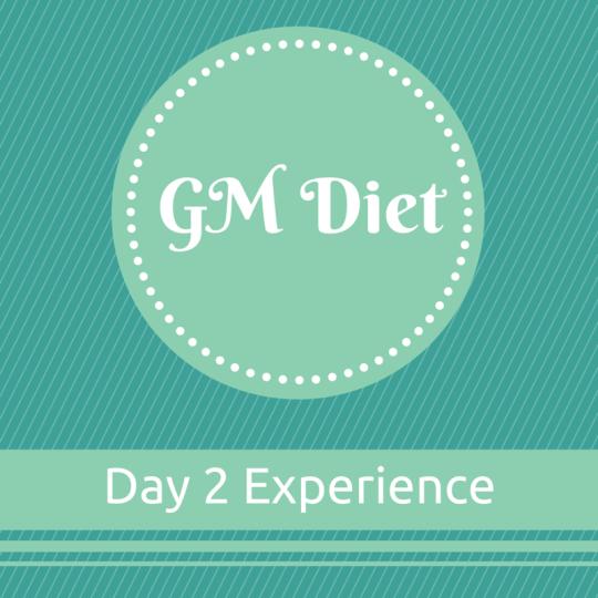 Vegetarian Indian GM Diet Day 2