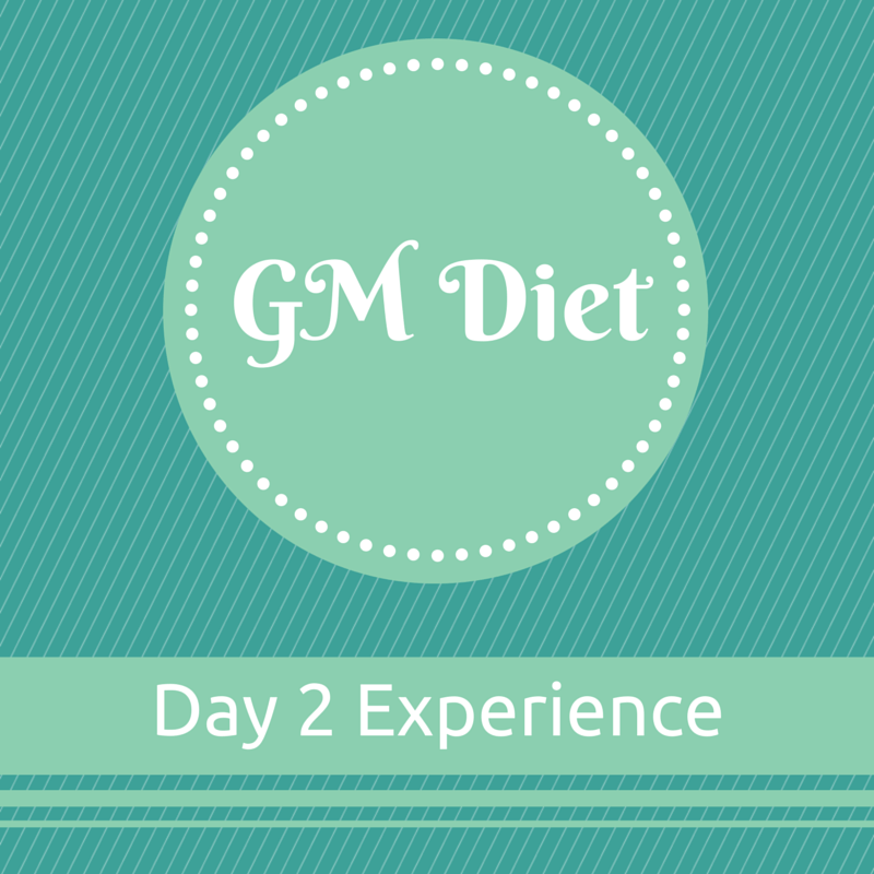 Vegetarian Indian GM Diet Day 2 : My Experience