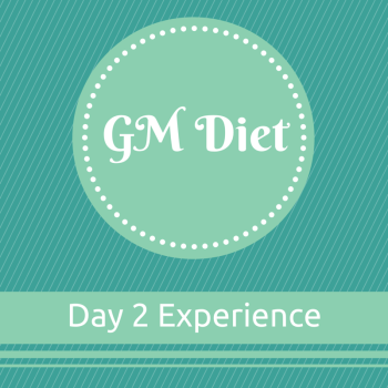 Vegetarian Indian GM Diet Day 2
