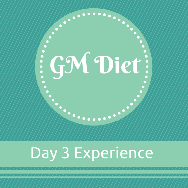 Vegetarian Indian GM Diet Day 3