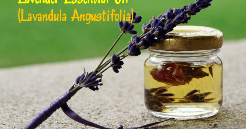 9 Uses of the Lavender essential oils socia
