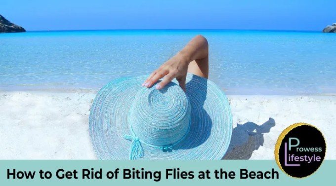 How-to-Get-Rid-of-Biting-Flies-at-the-Beach