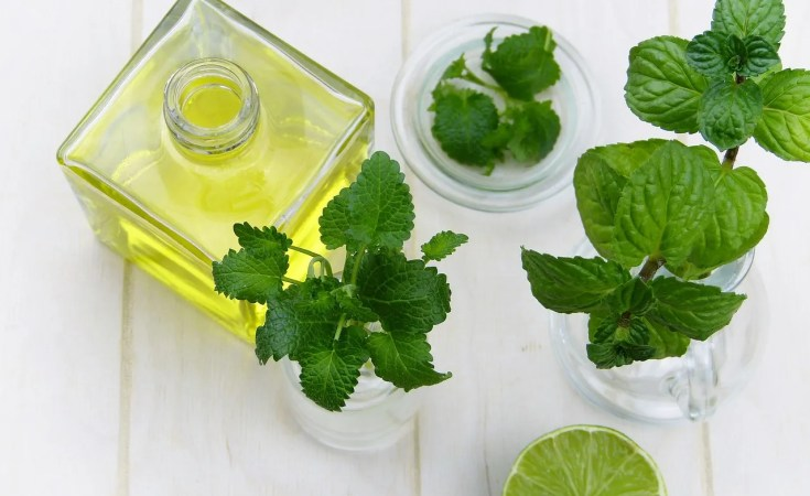 How to use peppermint oil for bad breath