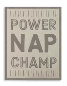 Demdaco Power Nap Champ Woven Blanket