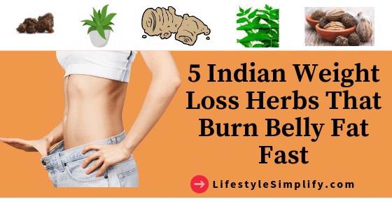 5 Indian Weight Loss Herbs That Burn Belly Fat Fast