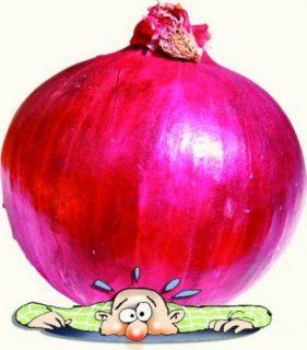 onion substitute