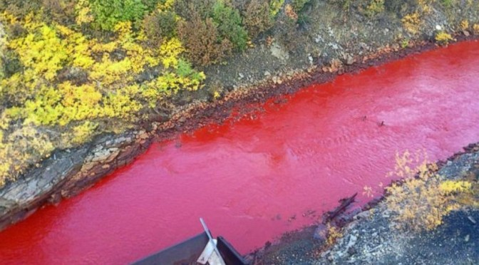 River turns red in russia, lifestyle today news, snippets, nov 10