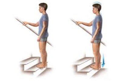 heel rise exercises