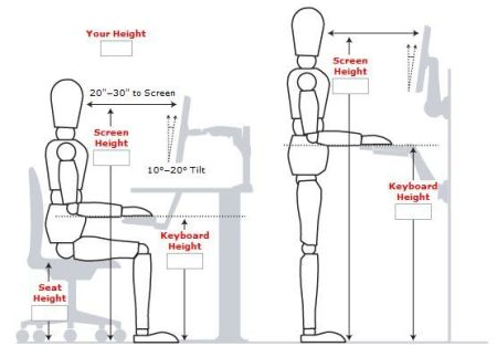 proper posture for standing and sitting at a desk