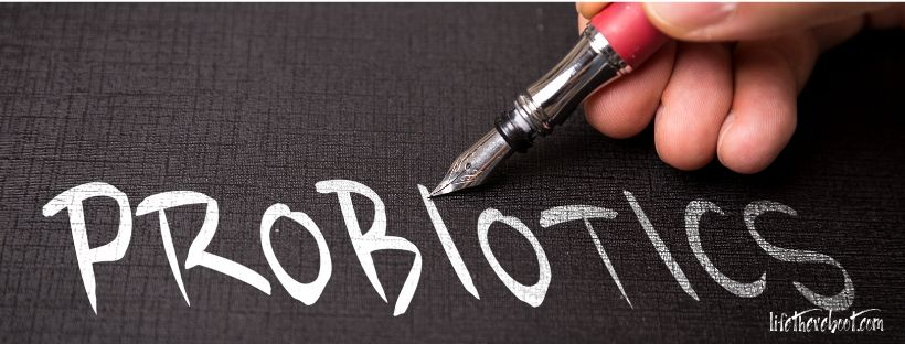 probiotics food immune system