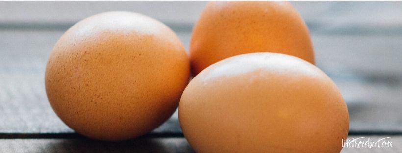 eggs food immune system