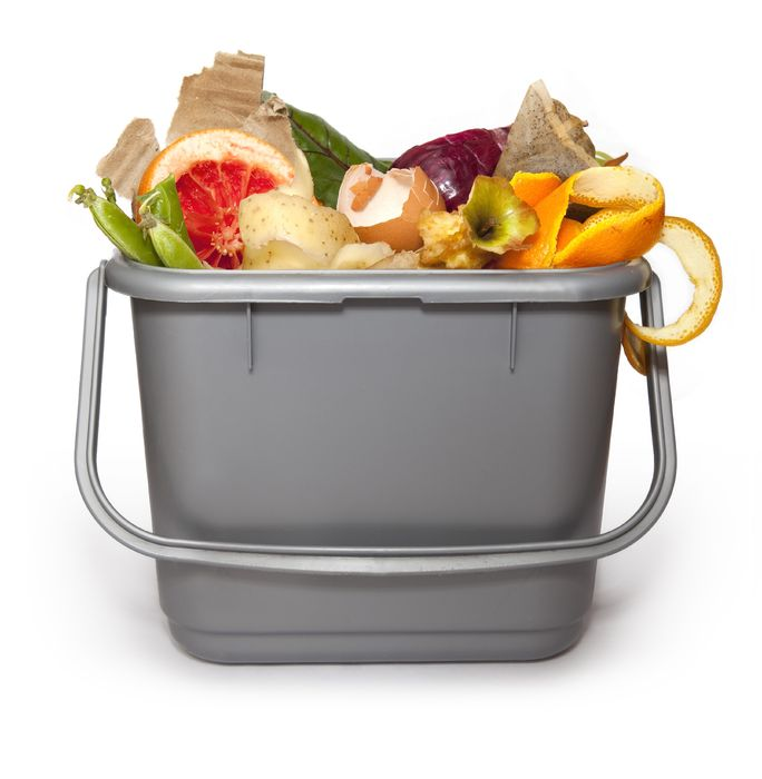 Help Save The Earth By Knowing How To Reuse And Recycle Leftover Foods.