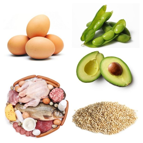 Top 5 Protein for the summer
