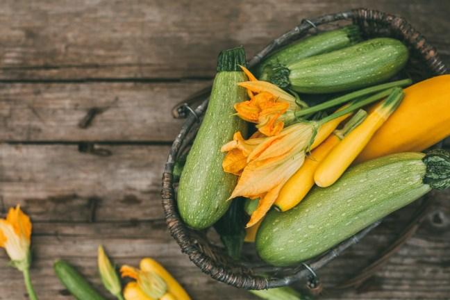 Freshly picked zucchini in a basket. Harvest season.