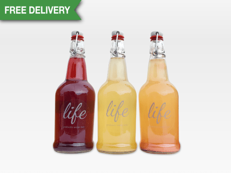 LIFE | 3-Pack Water Kefir (FREE DELIVERY)