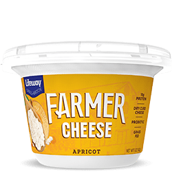 Apricot Farmer Cheese