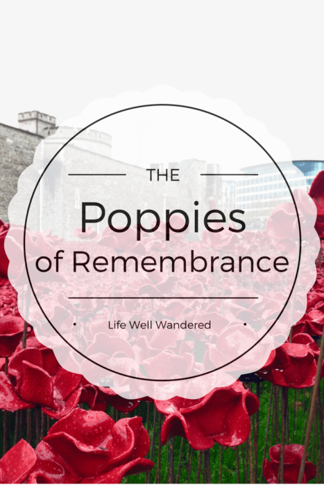 the poppies of remembrance at the tower of london