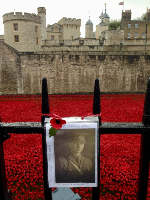 tower of london poppies memorial