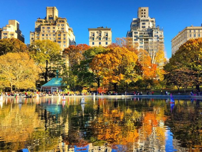 central park pond reflection autumn