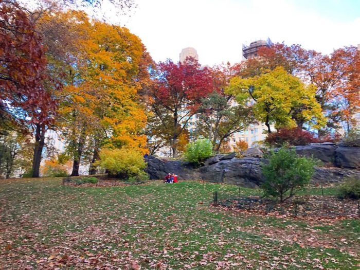 central park autumn colours