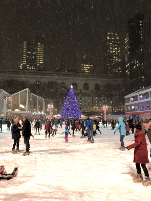bryant park ice skating rink in the snow