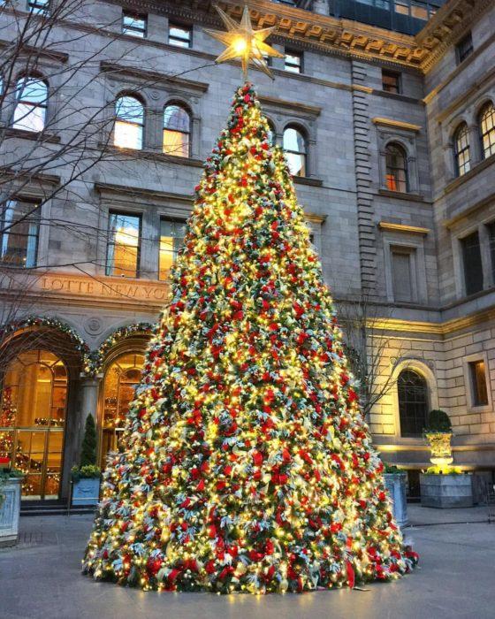 the palace christmas tree