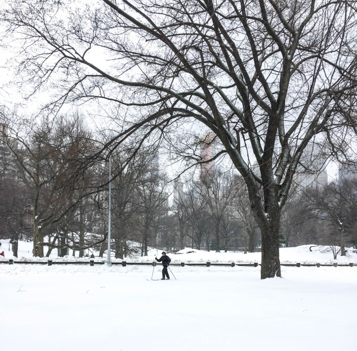 central park cross country skiing storm stella
