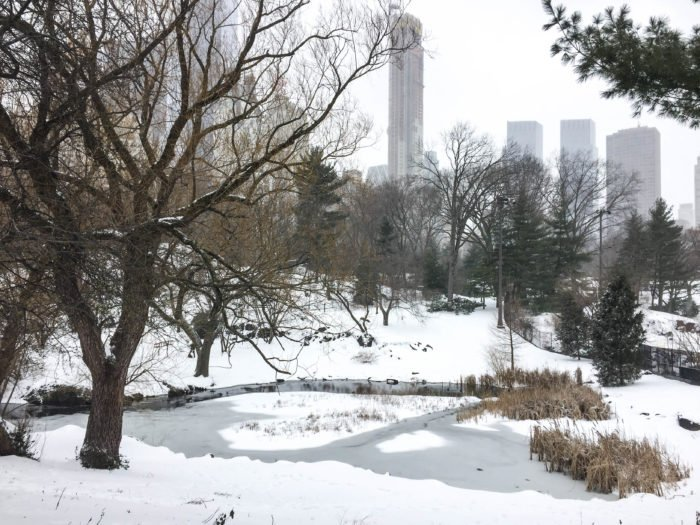 central park snow views