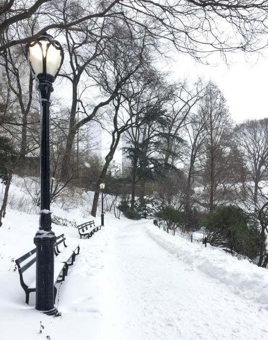 central park storm stella