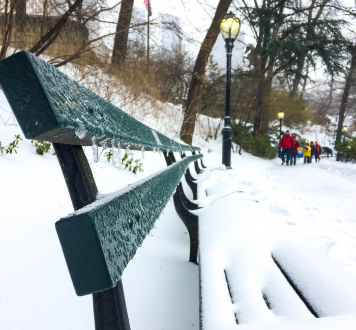 central park icy bench
