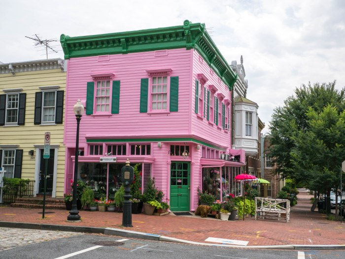dc pink store georgetown