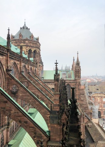 strasbourg cathedral from above 3