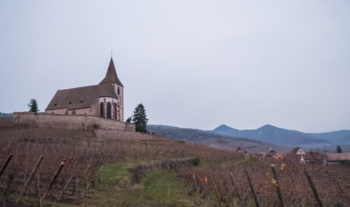 alsace france at dusk mountainside vineyard