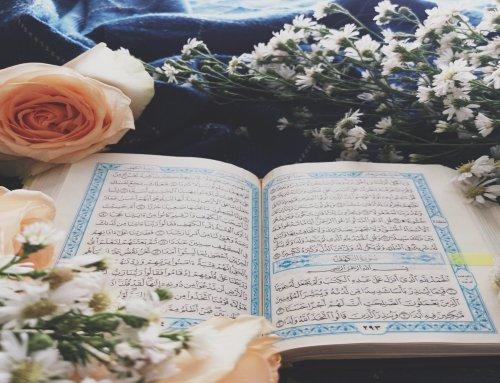 Recite Qur'an Slowly & Beautifully