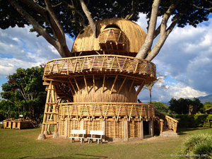 bamboo tree house, bamboo treehouse