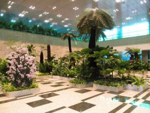 changi airport singapore was absolutely beautiful and so clean