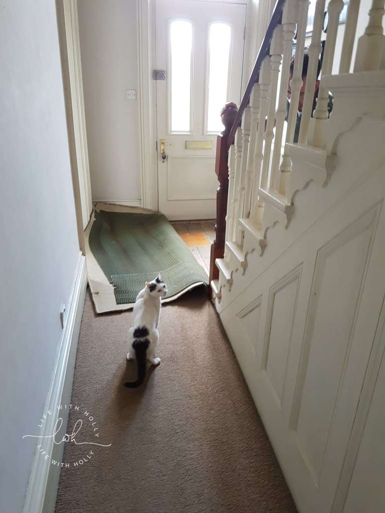 Sanding original floorboards - Victorian Hallway Makeover - Transformation - Life with Holly