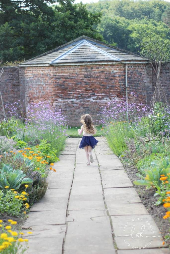 Potager Style Garden - Sunflowers in Victorian Conservatory - Harewood House - Seeds of Hope Exhibition - Life with Holly Blog