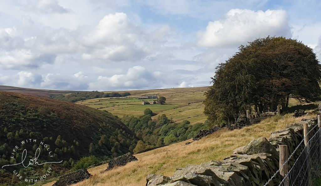 Weekend Wander - Autumnal Geoache Walk - Digley Reservoir, Holmfirth