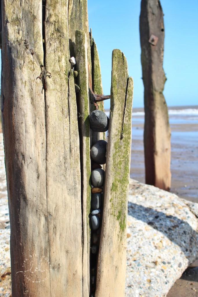 Driftwood Coastal Defences at Spurn