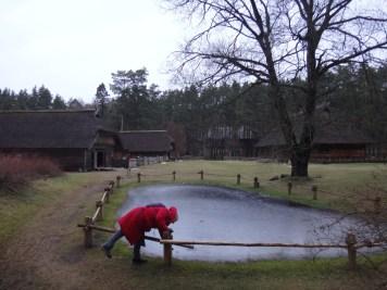 Pond was frozen over