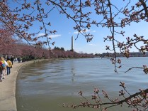 The Tidal Basin, with the Washington Monument in the distance