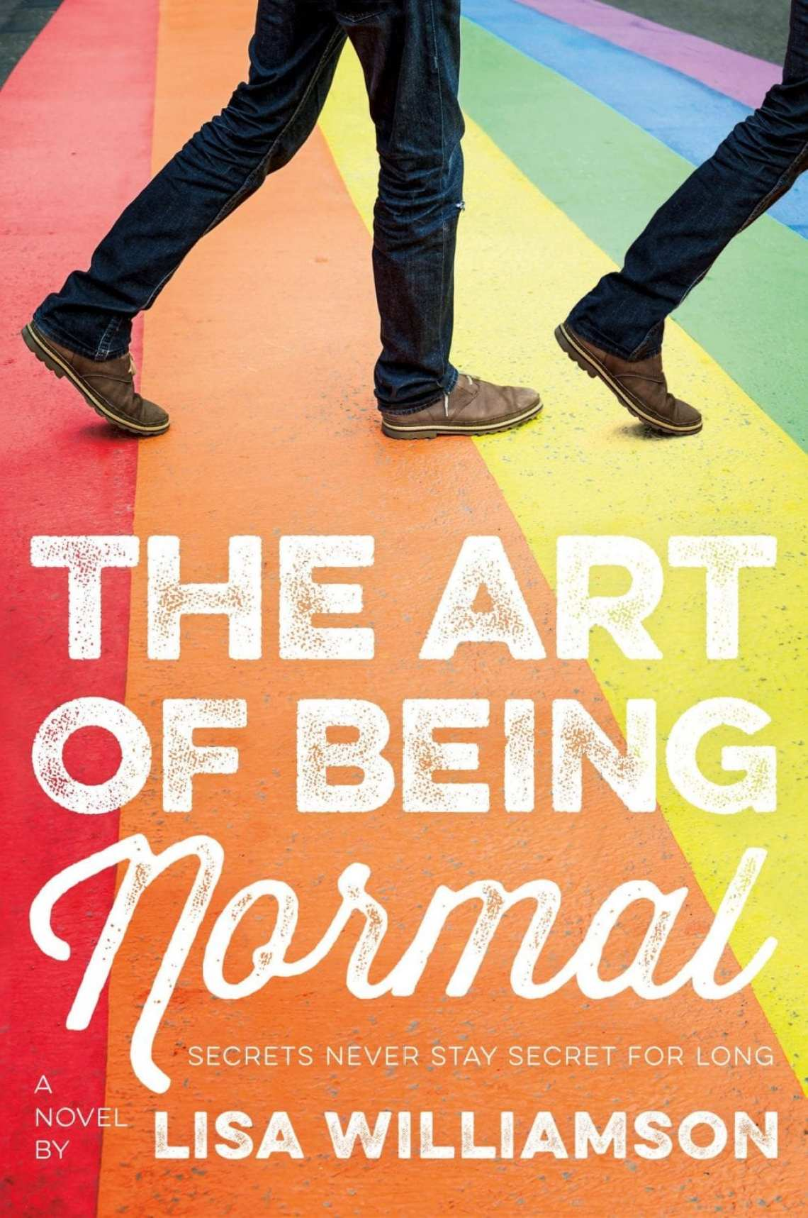 The Art of Being Normal Book Cover
