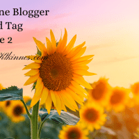 Sunshine Blogger Award Tag Take 2